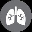icon-atmung-bronchien
